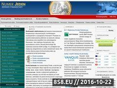 Miniaturka domeny numer-jeden.com.pl