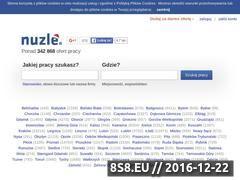 Miniaturka domeny www.nuzle.pl