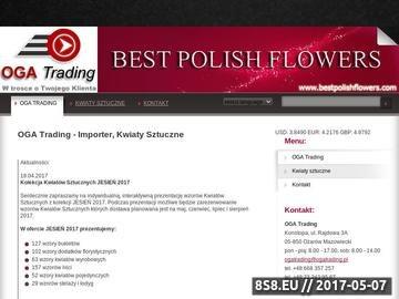 Zrzut strony Importer, kwiaty sztuczne - OGA Trading