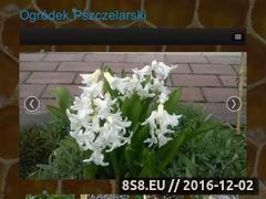 Miniaturka domeny ogrodekpszczelarski.boo.pl