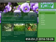 Miniaturka domeny www.ogrodyzielonypunkt.pl