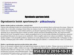 Miniaturka domeny www.ogrodzeniasportowe.com.pl
