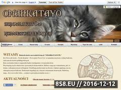 Miniaturka domeny www.omahkatayo.pl