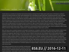 Miniaturka domeny www.organizerpolska.pl
