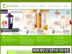 Miniaturka domeny www.ori-konsultant.pl