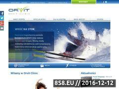 Miniaturka domeny www.orvit.pl