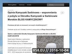 Miniaturka domeny www.orwkamyczek.pl