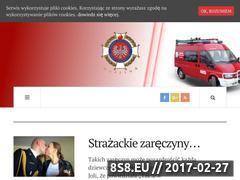 Miniaturka domeny osp.nurzyna.pl