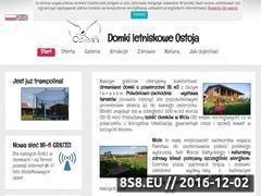 Miniaturka domeny ostoja-wicie.pl