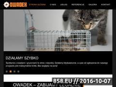 Miniaturka domeny www.owadek.pl