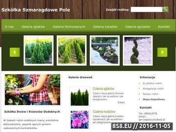 Zrzut strony Szkółka drzew i krzewów ozdobnych - lubuskie