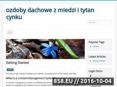 Miniaturka domeny ozdobydachowe.com.pl