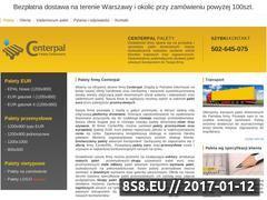 Miniaturka domeny paletycentrum.pl