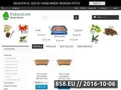 Miniaturka domeny www.palmatum.pl