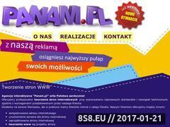 Miniaturka domeny www.panam.pl