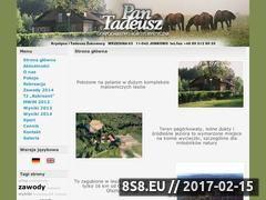 Miniaturka domeny www.pantadeusz.pl