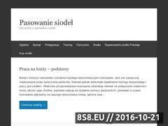 Miniaturka domeny pasowaniesiodel.pl