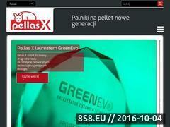 Miniaturka domeny www.pellasx.pl