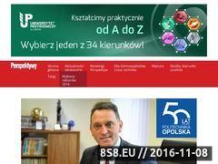 Miniaturka domeny www.perspektywy.pl