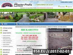 Miniaturka domeny pflasterprofis.pl
