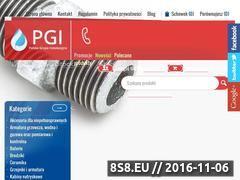 Miniaturka domeny pgi.com.pl