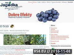 Miniaturka domeny www.phu-jagodka.pl