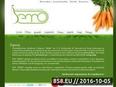 Miniaturka domeny www.phubemo.pl