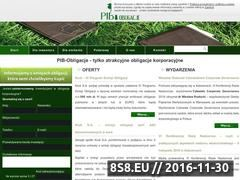 Miniaturka domeny pib-obligacje.pl