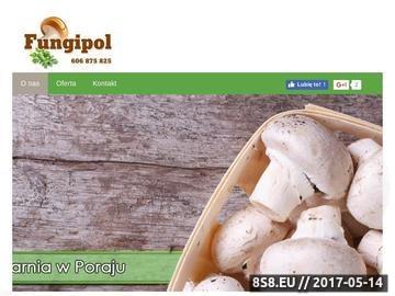 Zrzut strony FUNGIPOL - uprawa, eksport grzybów jadalnych, uprawa pieczarek