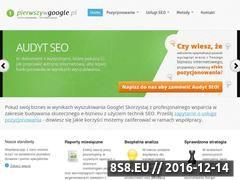 Miniaturka domeny pierwszywgoogle.pl