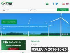 Miniaturka domeny www.pigeo.org.pl