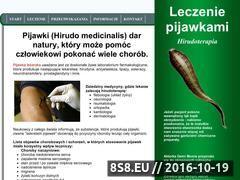 Miniaturka domeny www.pijawki.warszawa.pl
