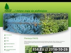 Miniaturka domeny pikos.com.pl
