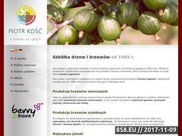 Zrzut strony Piotr Kość - drzewa owocowe