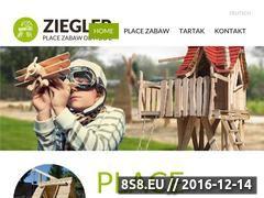 Miniaturka domeny place-zabaw.com