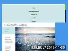 Miniaturka domeny plackowejadlo.pl