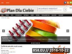 Miniaturka domeny plandlaciebie.pl