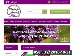 Miniaturka domeny www.plantacjalawendy.pl