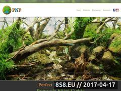 Miniaturka domeny pnproject.pl