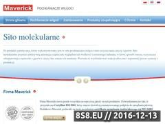 Miniaturka domeny www.pochlaniaczwilgoci.com.pl