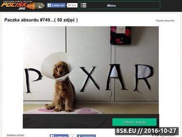 Zrzut strony Pocisk.org - śmieszne zdjęcia i filmy!