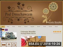 Miniaturka domeny pod-dmuchawcem.pl
