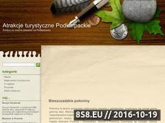 Miniaturka domeny podkarpackie.enui.pl