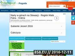 Miniaturka domeny www.pogoda.ekologia.pl