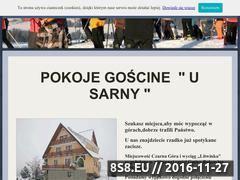 Miniaturka domeny www.pokoje-sarna.pl