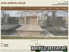 Miniaturka domeny polkam.com.pl