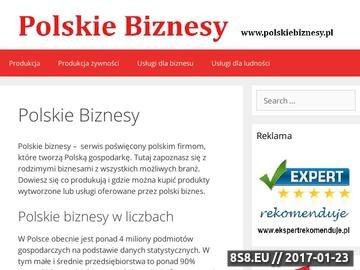 Zrzut strony Polskiebiznesy.pl branżowy katalog firm