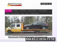 Miniaturka domeny www.pomoc-drogowa-szczecin.com.pl