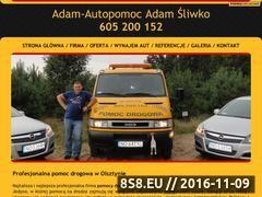 Miniaturka domeny www.pomocdrogowa.olsztyn.pl