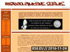 Miniaturka domeny posadzki.ubf.pl
